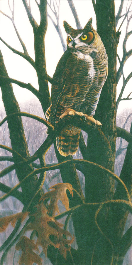 Great Horned Owl Painting - Great Horned Owl by Shari Erickson