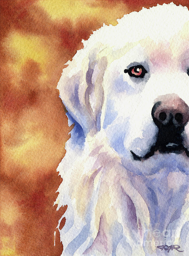 Great Painting - Great Pyrenees  by David Rogers