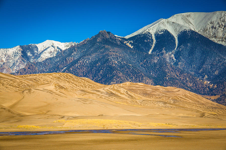 Sand Dunes Photograph - Great Sand Dunes In Colorado by Penny Miller