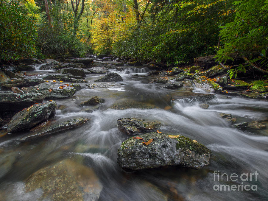 Great Smoky Mountains Photograph - Great Smoky Mountains. by Itai Minovitz