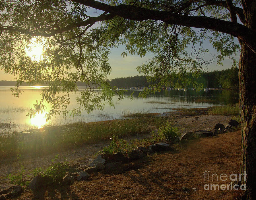 Lakes Photograph - Great Way To Start The Day by Diana Nault