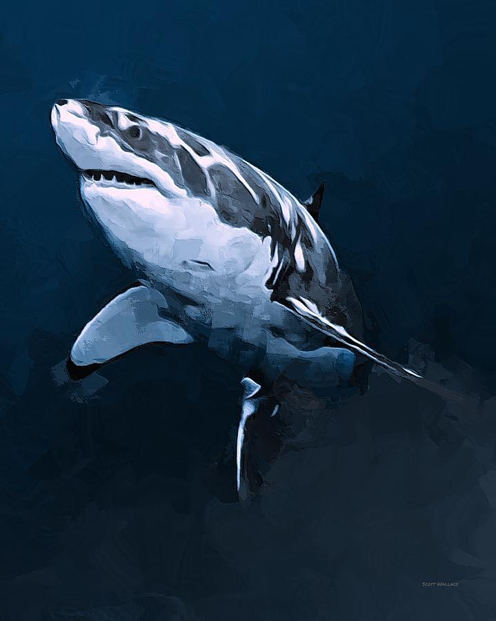 Great White Shark Digital Art by Scott Wallace  Great White Shark Painting
