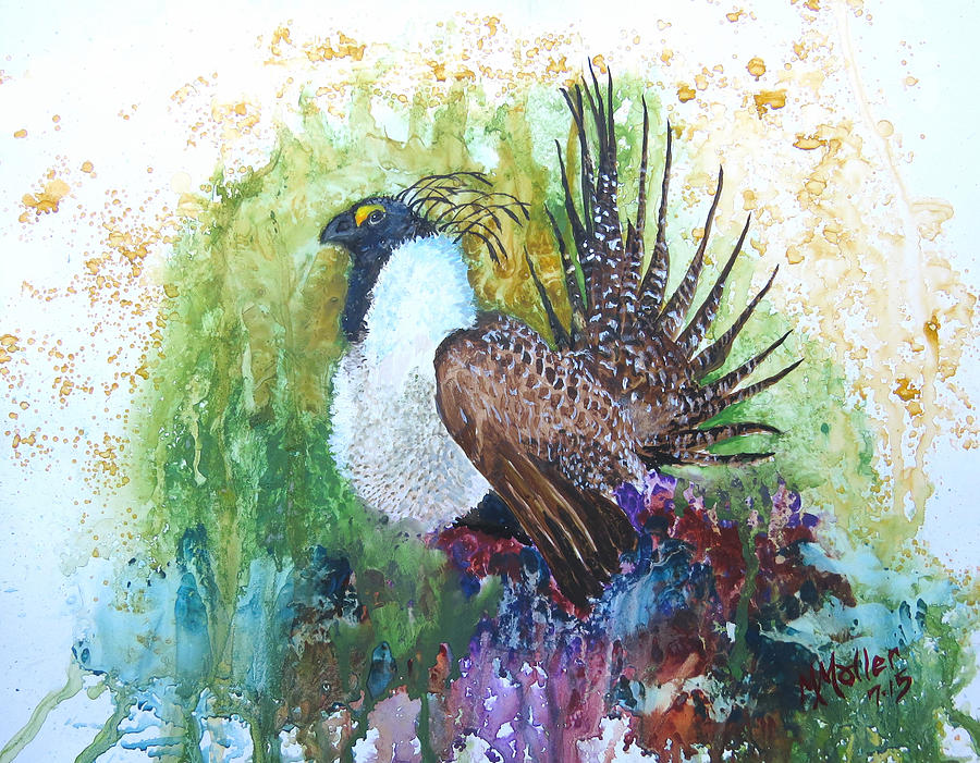 Sage grouse drawing - photo#40