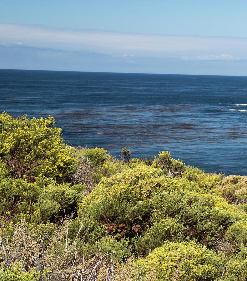 Ocean Photograph - Green And Blue by Raquel Caceres Melo