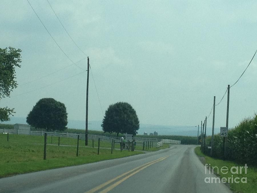 Amish Photograph - Green August Countryside Days by Christine Clark