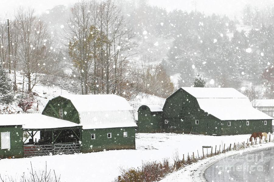 Green Barn Farm by Benanne Stiens