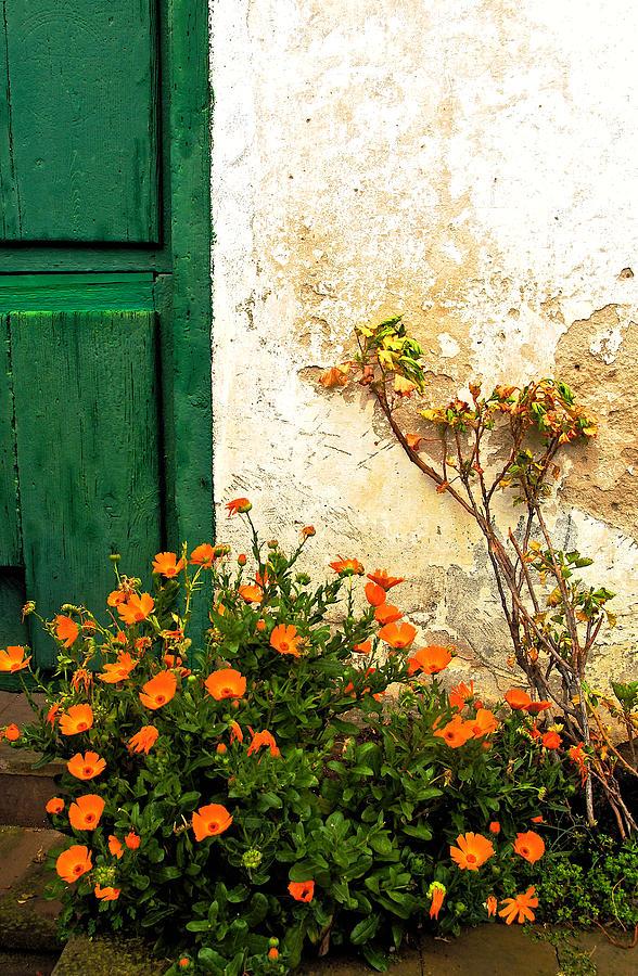 Green Door Photograph - Green Door - Orange Flowers by Georgia Nick