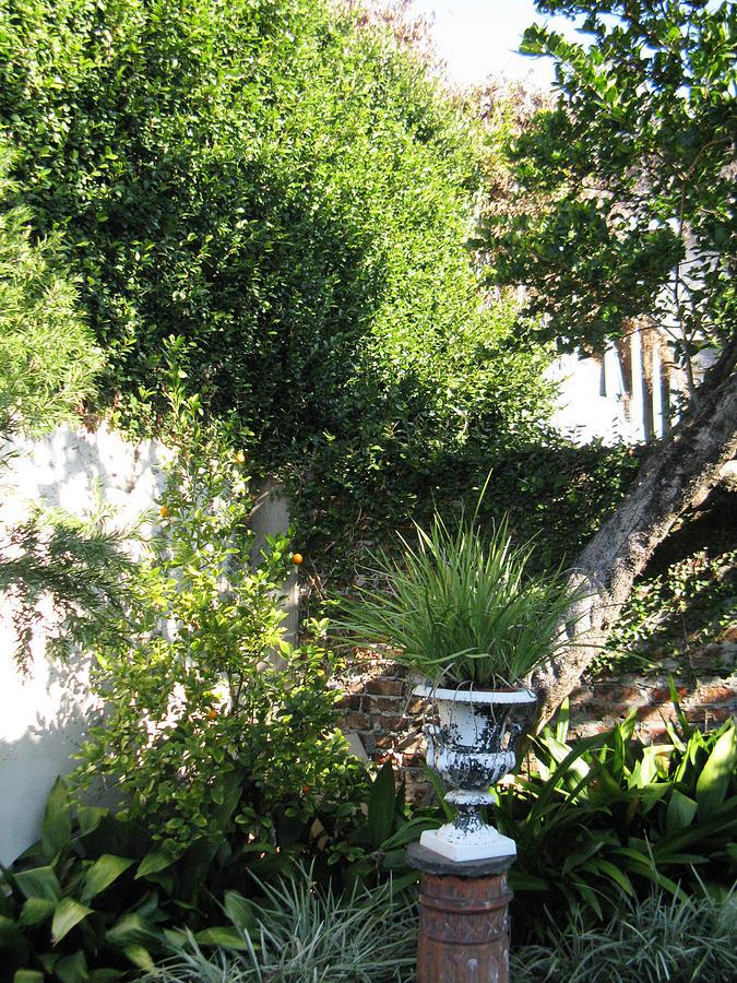 Courtyard Photograph - Green Door 13 by Tom Hefko