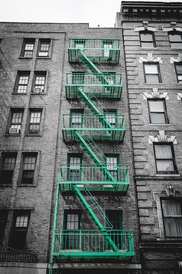 City Photograph - Green Escape by Alicia Romano