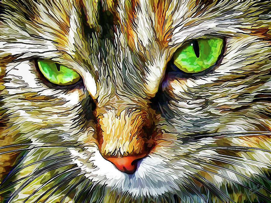Nature Digital Art - Zen Cat by ABeautifulSky Photography by Bill Caldwell