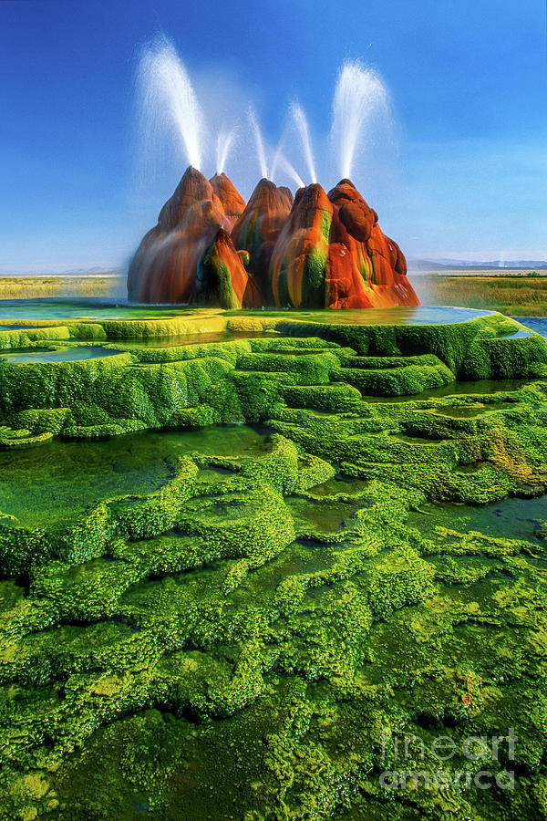 America Photograph - Green Fly Geyser by Inge Johnsson