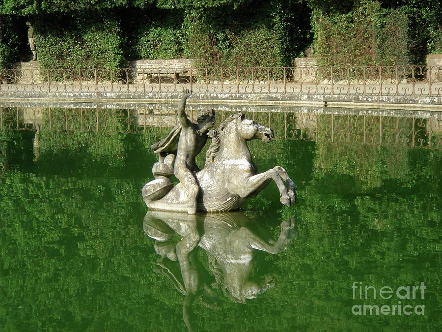 Green Photograph - Green Fountain by David Shaffer