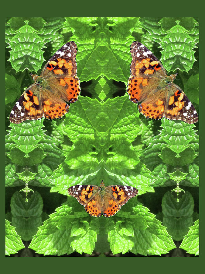 Green Goddess With Butterflies by Julia L Wright