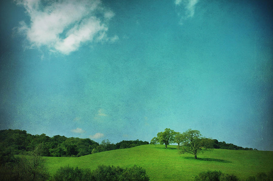 Landscape Photograph - Green Grass Blue Sky by Laurie Search