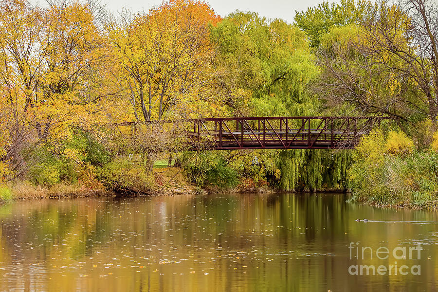 Bridge Photograph - Green Isle by Nikki Vig