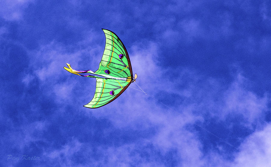 Kite Photograph - Green Kite by Pam Kaster
