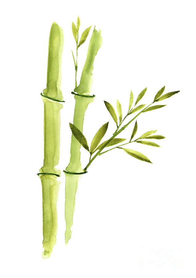 Bamboo Leaves, Green Living Room Wall Decor, Watercolor Painting ...