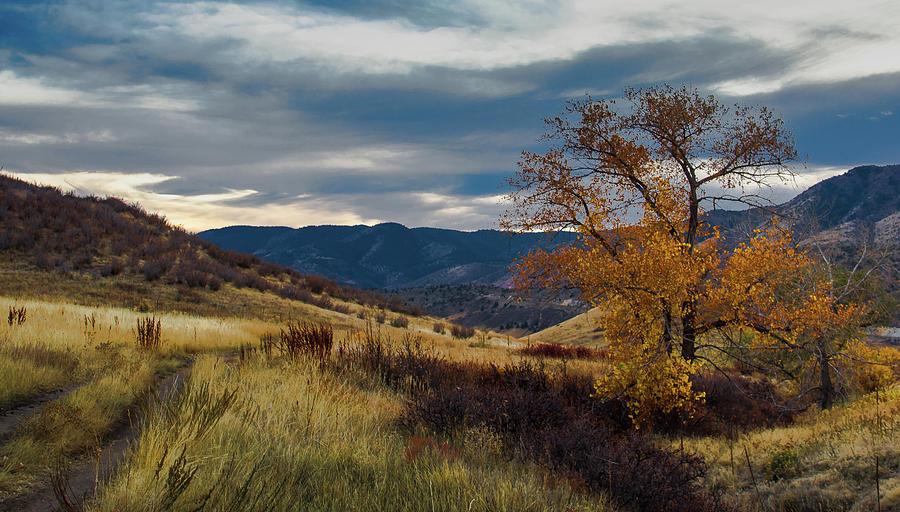 Green Mountain Photograph - Green Mountain Fall Colors by Dave Fish