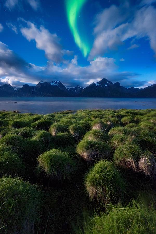 Aurora Borealis Photograph - Green Night by Tor-Ivar Naess
