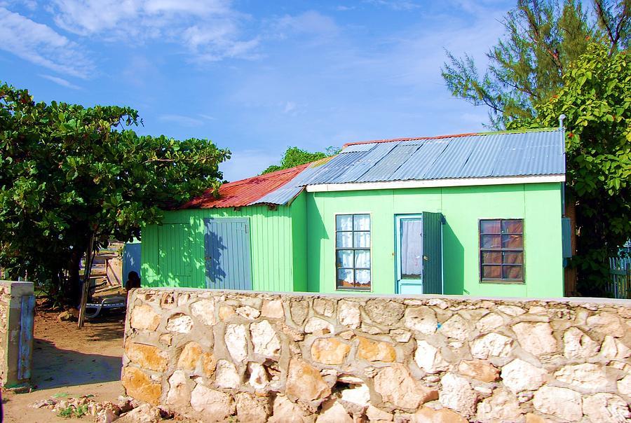 House Photograph - Green Peace by Debbi Granruth