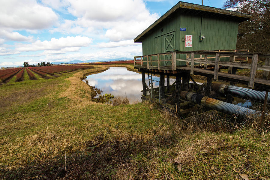 Blueberry Photograph - Green Pump House by Tom Cochran