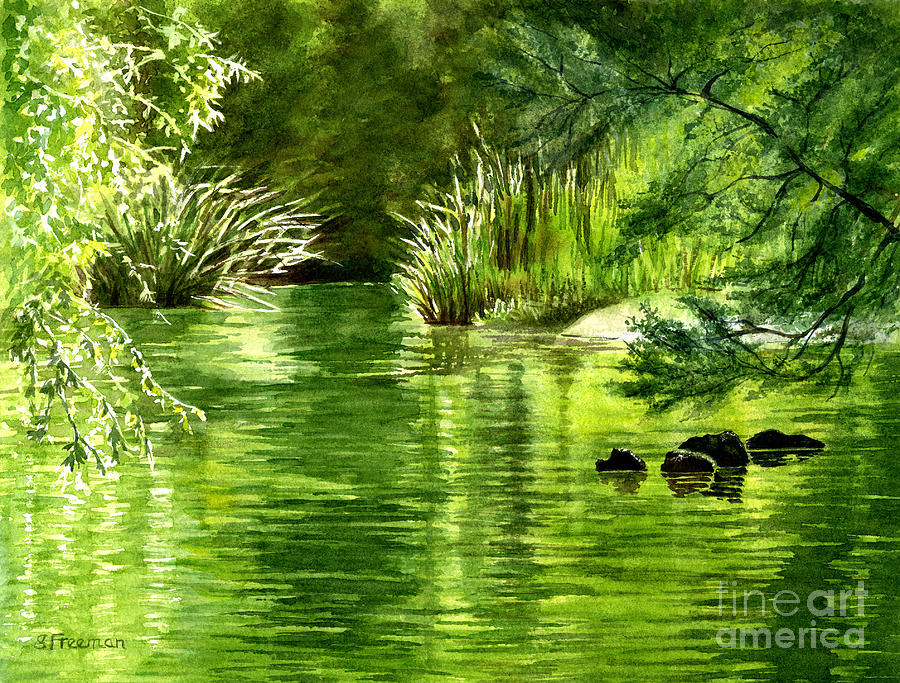 Green Trees Painting - Green Reflections With Sunlit Grass by Sharon Freeman