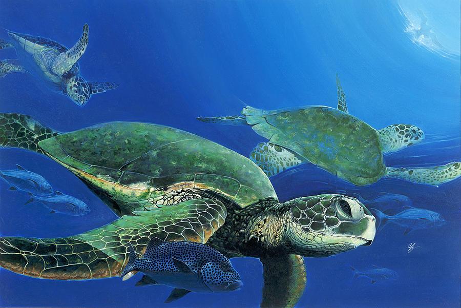 Green Sea Turtles Painting - Green Sea Turtles by Durwood Coffey