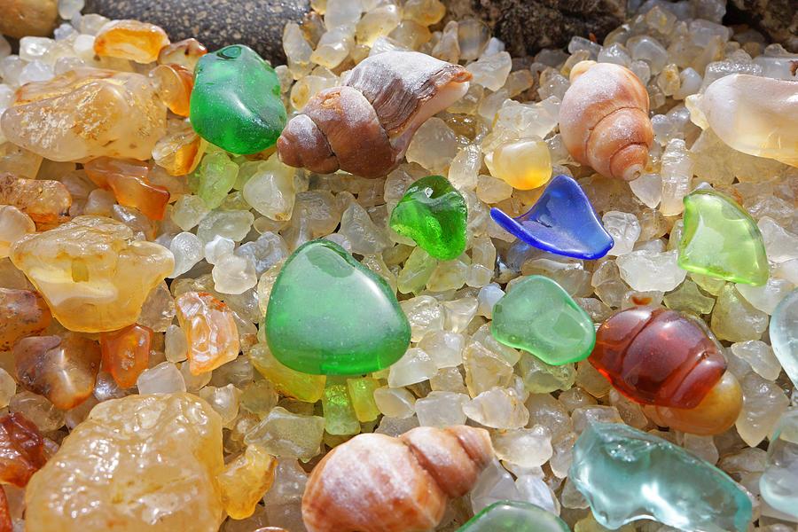 Green Seaglass Art Prints Sea Glass Shells Agates Photograph