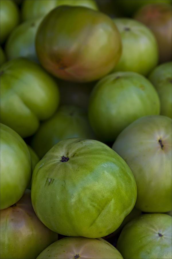 Tomato Photograph - Green Tomatoes by Robert Ullmann