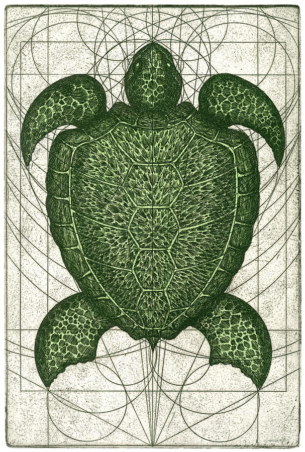 Turtle Painting - Green Turtle by Charles Harden