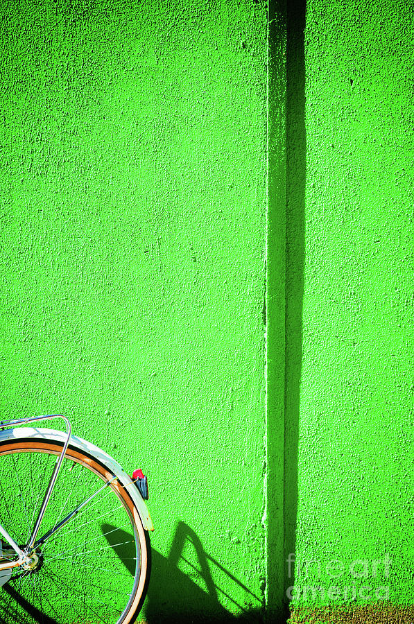 Green wall and bicycle wheel by Silvia Ganora