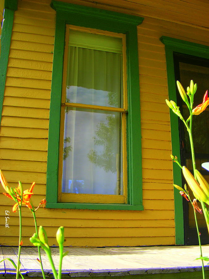House Photograph - Green Window by Ed Smith