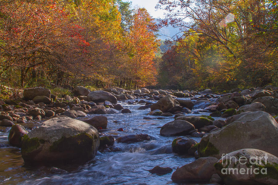 Greenbriar Creek by Photography by Laura Lee