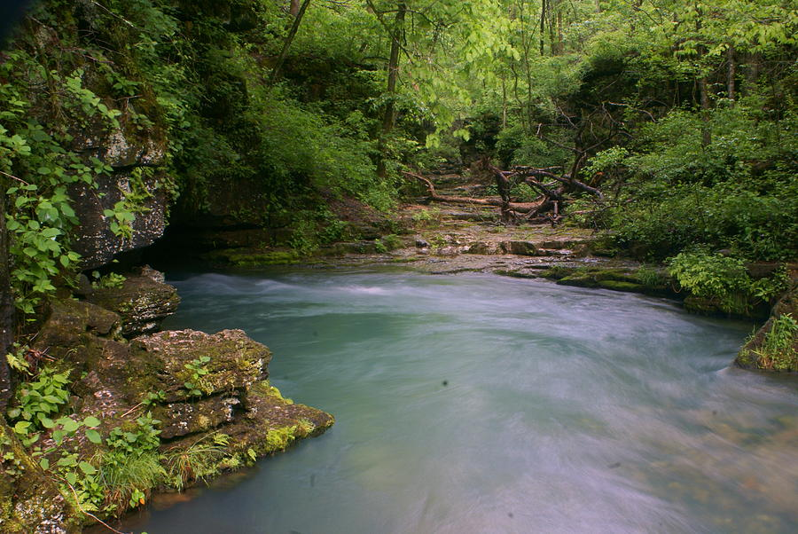 Missouri Photograph - Greer Spring by Marty Koch