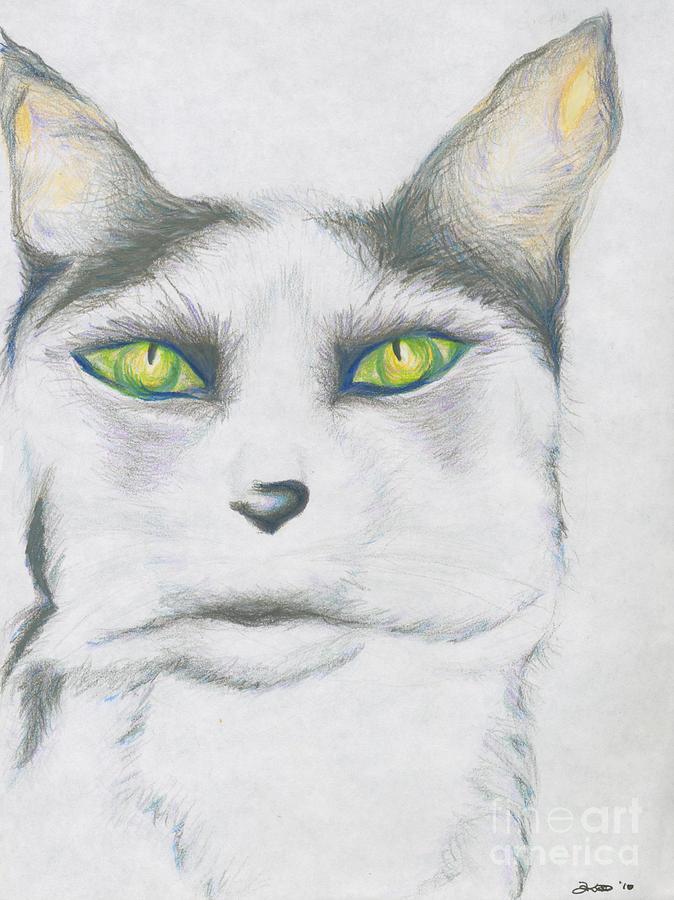Cat Drawing - Gretta by Kim Sy Ok