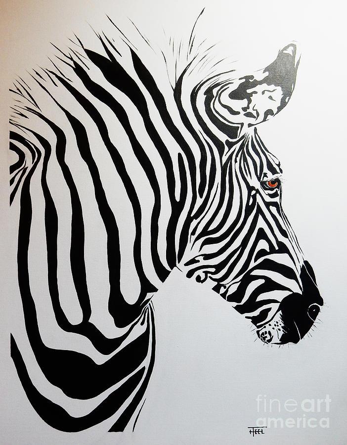 Grevy's Zebra by Harold Teel