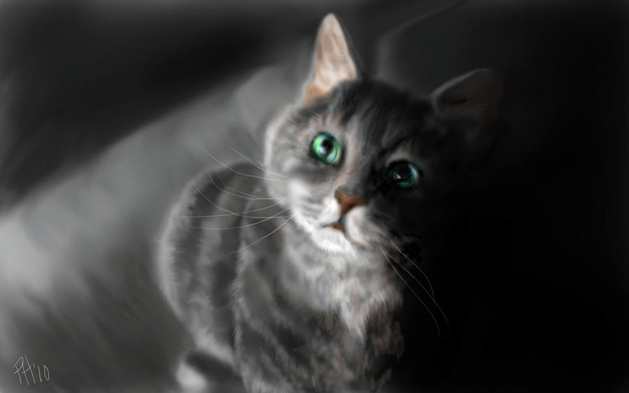 Cat Painting - Grey On Gray by Peggy Hickey