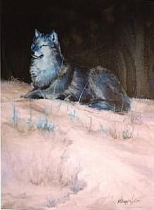 Animal Painting - Grey Wolf basking in the sun by Naomi Dixon