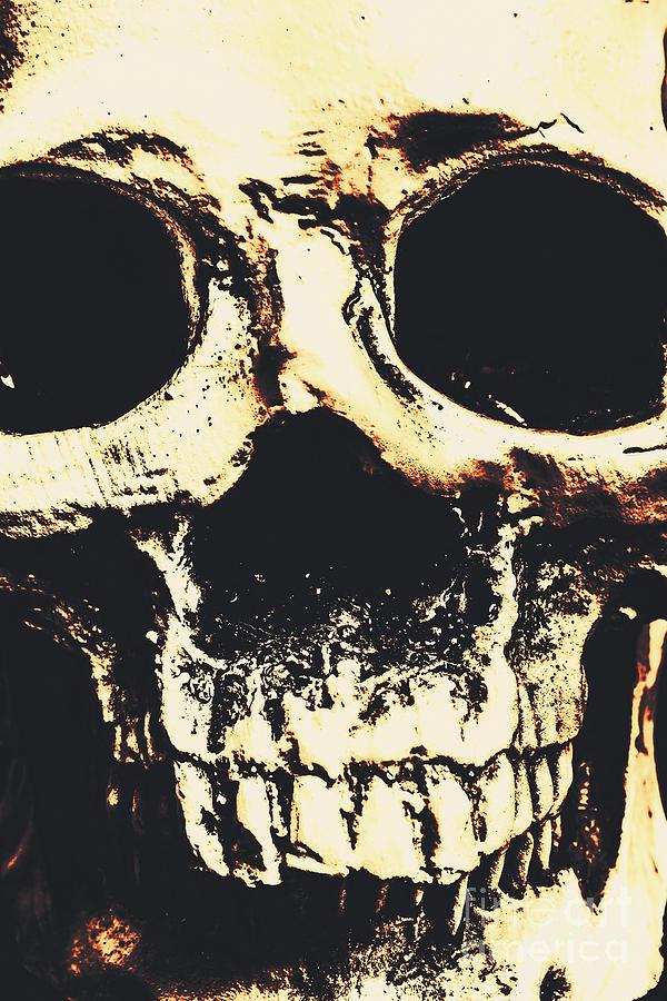 Skulls Photograph - Grim Grin by Jorgo Photography - Wall Art Gallery