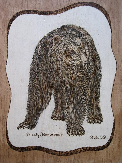 Landscape Pyrography - Grizzly Bear by Steven Steven