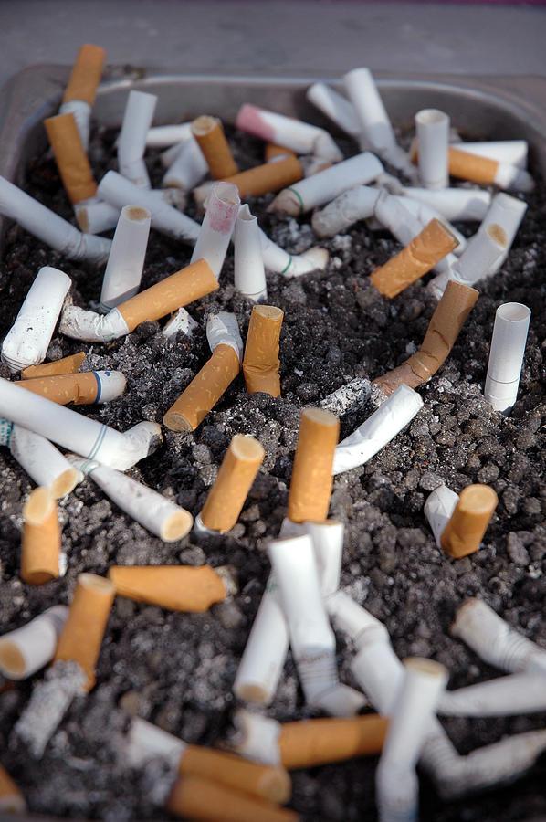 Cigarette Photograph - Gross by Frank Mari