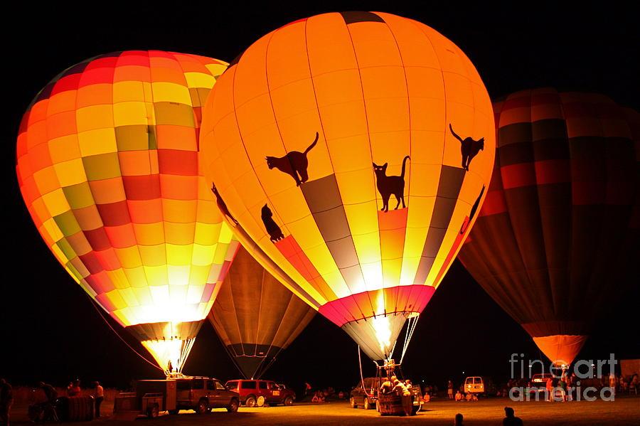 Hot Air Balloon Photograph - Grounded by Lindsay Felty