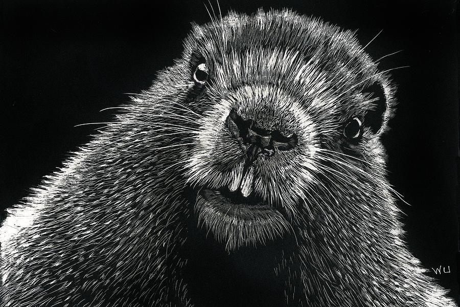 Groundhog by William Underwood
