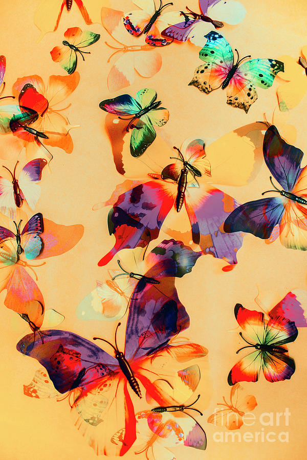 Background Photograph - Group Of Butterflies With Colorful Wings by Jorgo Photography - Wall Art Gallery