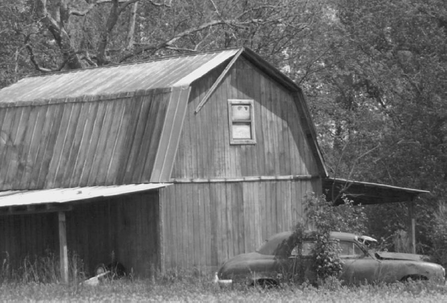 Barn Photograph - Growing Old Together by Linda Bennett