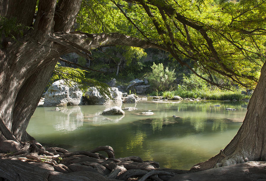 River Photograph - Guadalupe River by Brian Kinney