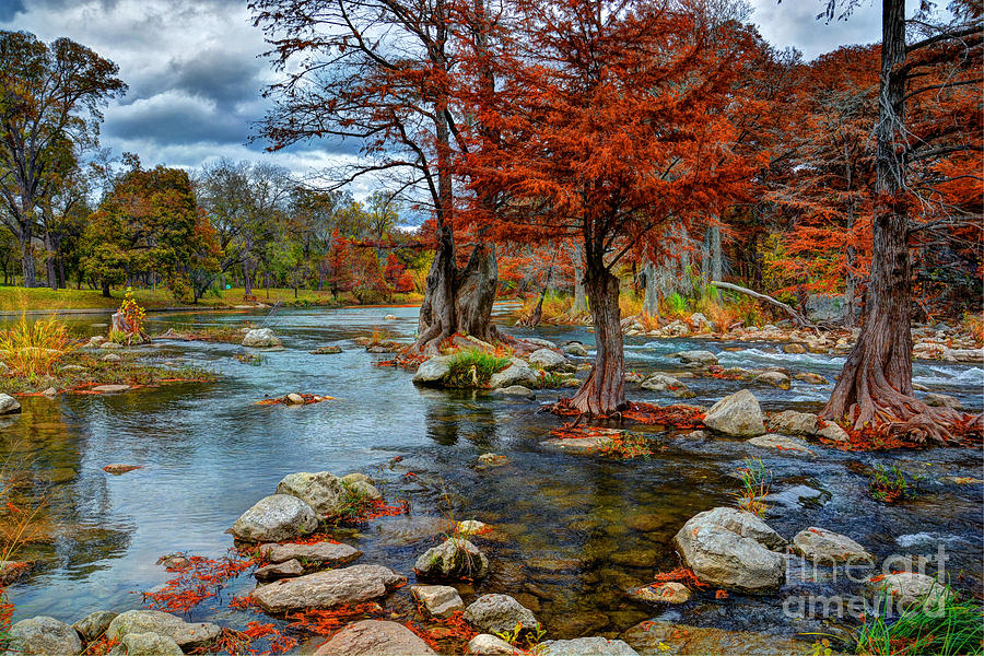 Guadalupe River Photograph - Guadalupe River In Autumn by Savannah Gibbs