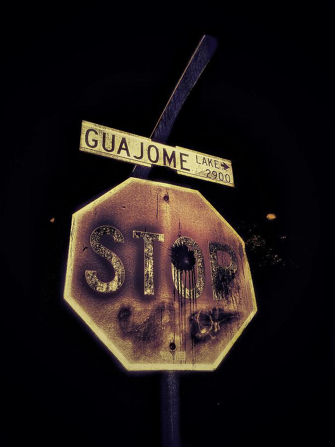 Lake Photograph - Guajome Lake Street - Stop Sign by Eddie G