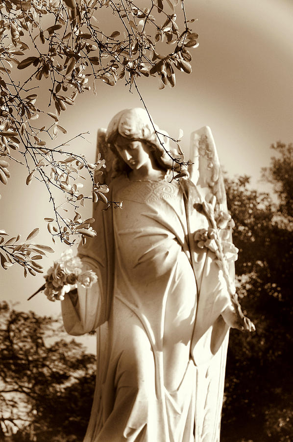 Angel Photograph - Guardian Angel Bw by Susanne Van Hulst