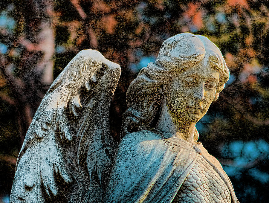 Cemeteries Photograph - Guardian by Gary Shepard